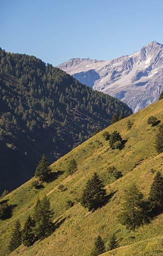 Paesaggio della Vallecamonica